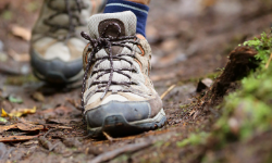 Étapes organisation randonnée